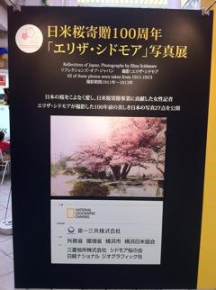 日米桜寄贈100周年シドモア写真展
