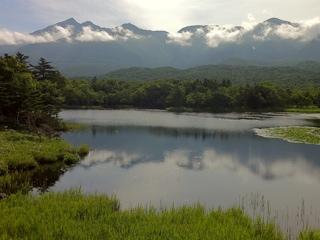 朝の知床五湖(一湖)