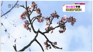 Beppu_ichiban